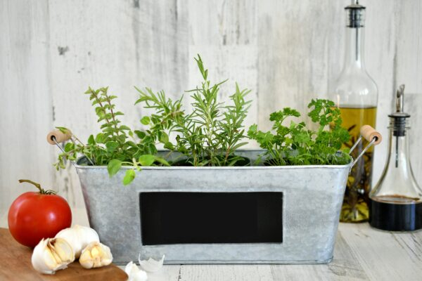Italian herb garden in a metal decorative container with tomato, garlic, oil and vinegar photo by twenty20photos on Envato Elements