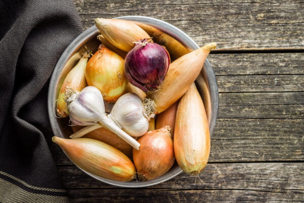 The golden shallot onion and garlic. Fresh bulbs photo by jirkaejc on Envato Elements