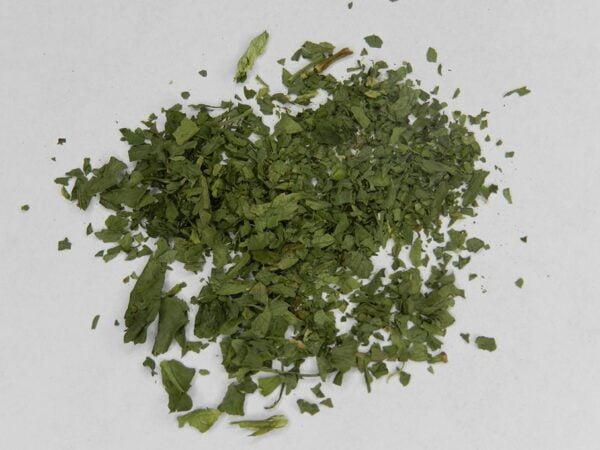 Celery Leaf